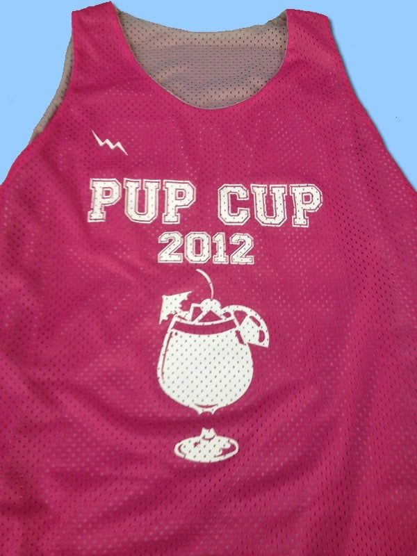 pup cup reversible jerseys